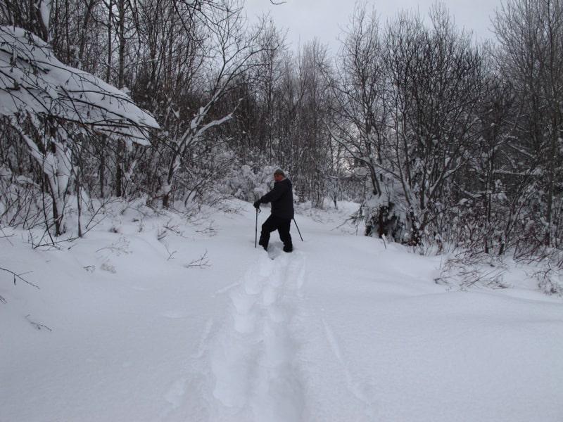 Paul breaking trail.
