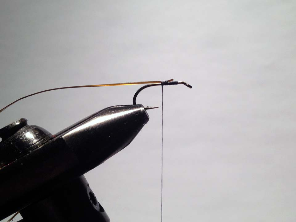 Olive Grizzly Dry Fly Step 3