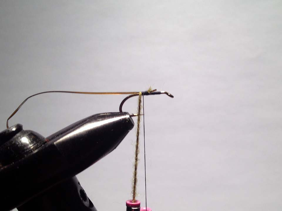 Olive Grizzly Dry Fly Step 4