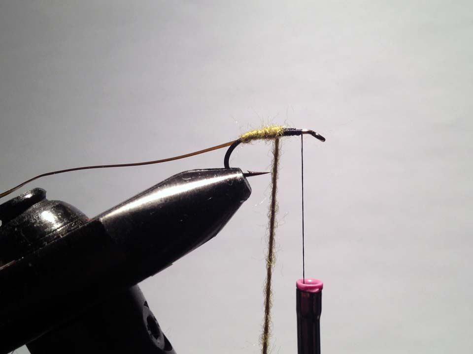 Olive Grizzly Dry Fly Step 6