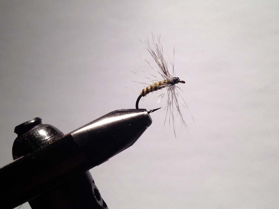 Olive Grizzly Dry Fly Step 14