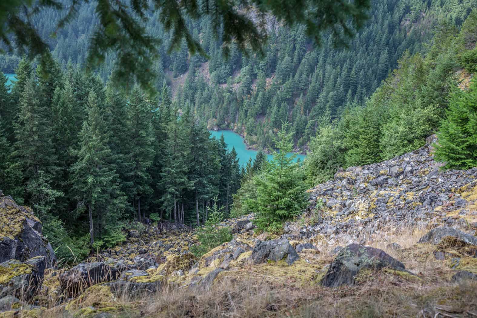 Diablo Lake in Washington State seen through the trees.